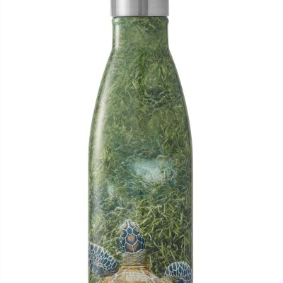 S'well BBC Earth Bottle